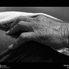 Project 365: November 16 - Hand of the Father. It's the cycle we all go through where the hands that gave us guidance and strength and love will rely on our own hands to provide the same in return.