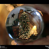 2018 Project 365: December 29 - Lensball<br /> <br /> Before the tree comes down, a quick shot through the Lensball.