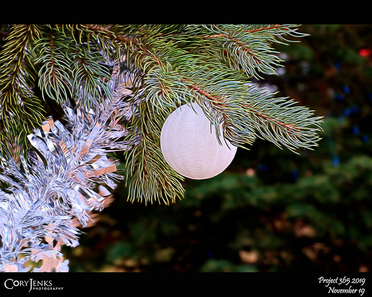 2019 Project 365: November 19 - Too Soon<br /> <br /> Although I love the look of decorated trees for the holidays, decorating Christmas trees before Thanksgiving is just too soon.
