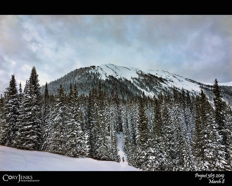 2019 Project 365: March 8 - Loveland<br /> <br /> A near perfect day at Loveland Ski Resort. Mild temperatures and light snow made and absolutely beautiful day! Now, had I not fallen as much it would've been perfect.