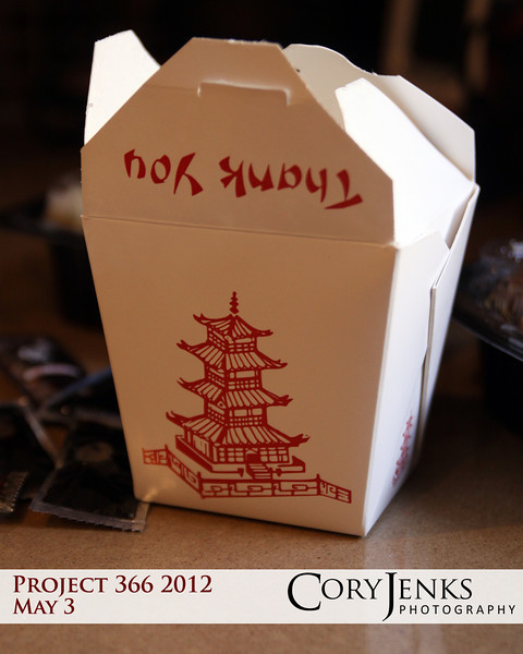 Project 366: May 3 - Take Out. Mongolian beef, pineapple chicken, chicken fried rice; great night for take out.