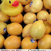 Project 366: March 9 - Yellow. A splash of the color yellow. An adventure of yellow duck photo.