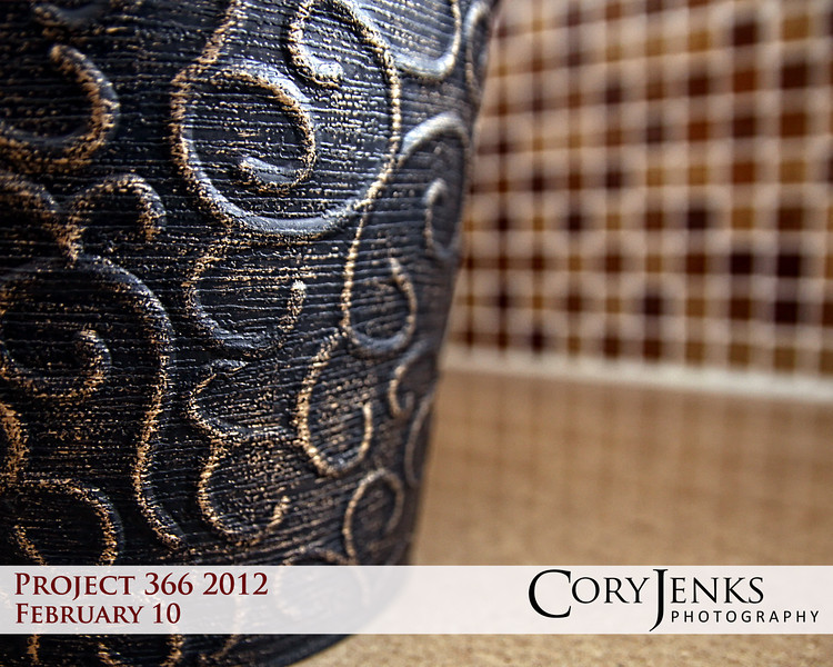 Project 365: February 10 - Curls. A study in textrue, depth of field, reflection, and wide angle lens.