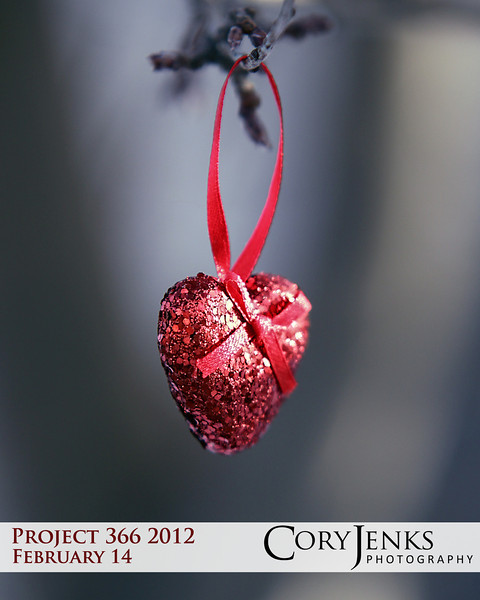 Project 366: February 14 - Valentine. Hopefully everyone has that special someone to celebrate Valentine's Day with, but if you are alone do not fret for one has not earned the key to your heart.