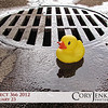 "Project 366: February 23 - Down The Drain. When it seems like everything is going ""down the drain"" just be thankful you are larger than the openings in the drain itself."