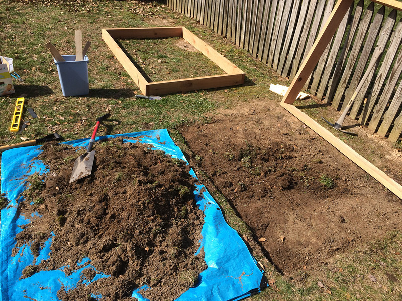 I cleared out the sod (what there was of it) so I could lay the first frame and have it be fairly snug against the ground, and so the sod could be replaced upside down. <br /> <br /> It turned out this wasn't too helpful since the ground was so tough and uneven I couldn't get the positioning I wanted.
