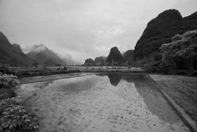 Rice Paddy, Yulong Valley
