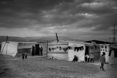 Bekaa Valley, Lebanon. November 2015. --------- Vallée de la Bekaa, Liban. Novembre 2015.