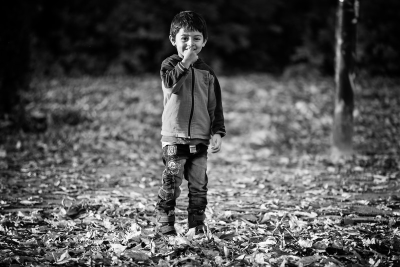 A little boy takes a walk in the park among the autumn leaves. Arrived at his destination in Germany, he can now aspire to start a new life with his family. Eberswalde, Germany.