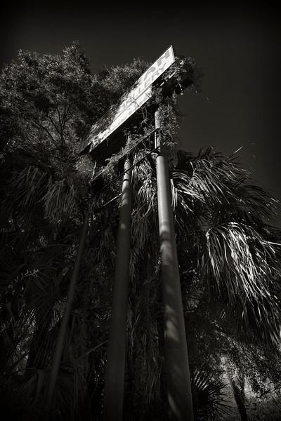 Floral Gallery, US 17-92, Florida