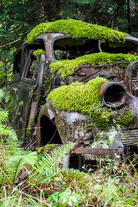 Rusty - 007 Orcas Car 02