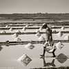 Salt_Kampot_Cambodia_08_Feb_2020_225