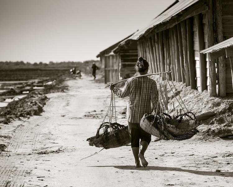 Salt_Kampot_Cambodia_08_Feb_2020_183