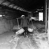 Salt_Kampot_Cambodia_09_Feb_2020_1696