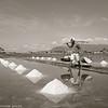Salt_Kampot_Cambodia_08_Feb_2020_1404