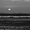 Salt_Kampot_Cambodia_11_Feb_2020_905
