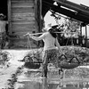 Salt Harvest_Kampot_Cambodia_08_March_2017_0646-Edit