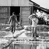 Salt Harvest_Kampot_Cambodia_08_March_2017_0609-Edit