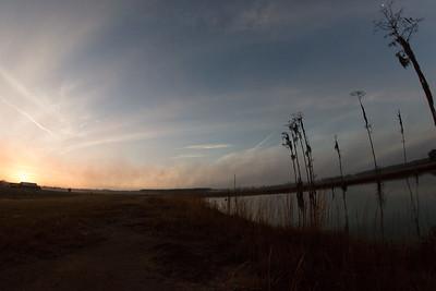 lakelandbirds-4