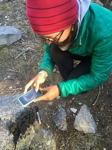 Dory Trimble collecting scat on JMT. Photo: Colleen Ferris