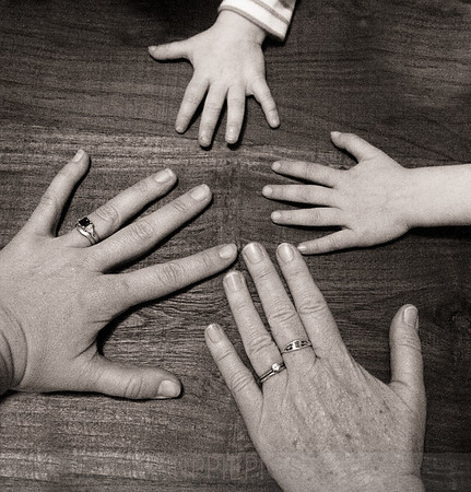 Day 13 (2 of 2) Home  Here are my mom (lower right), me, Sammie (top) and Ellie (right). You can sort of tell that my mom and my mom's hands are almost identical! As a matter of fact, one time she was commenting on what pretty hands I had when I pointed that fact out. She was surprised!  I just thought this would be a fun shot....