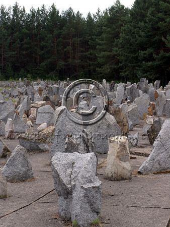 """Today there is no trace of the atrocities carried out at Treblinka and the campgrounds have been converted to a memorial site. A sequence of rectangular concrete blocks leads to the main camp area, simulating the train tracks on which the victims arrived. A symbolic cemetery was erected in a clearing in the forest with tombstones carrying the names of Jewish communities massacred. A single large monument in the center screams out """"Never Again!""""  <b>Click on photo to enlarge</b>"""