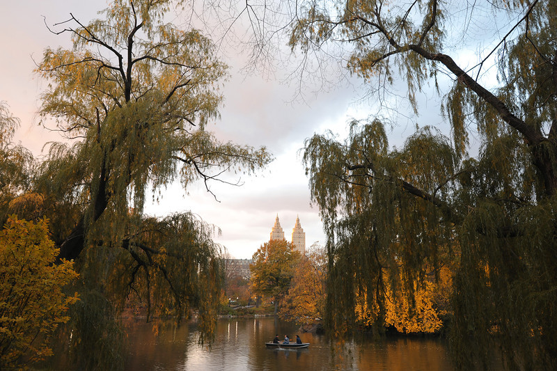 Central Park in Fall, New York<br /> © Laura Razzano 2011