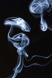 Smoke Study -002