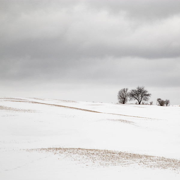 HIlls and Snow