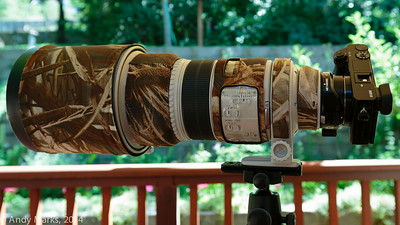 This is the configuration I most wanted to experience. Hold the lens..