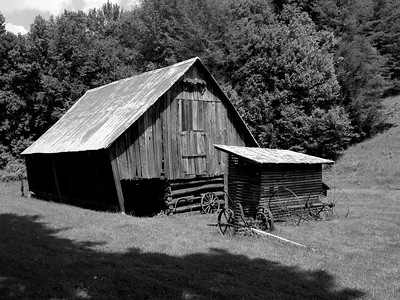 Miller Farm at Roan Mountain State Park, TN.  June 2009