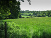Metropolitan Green Belt ~ Trent Park