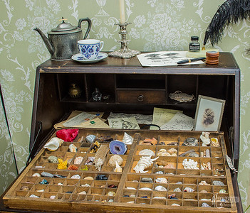 Print Drawer with Assemblage of Specimens from my Life