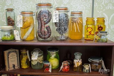 Handmade Mixed Media Specimen Jars by Marion Sidebottom (latex, clay, textiles, lampwork glass & botanical materials)