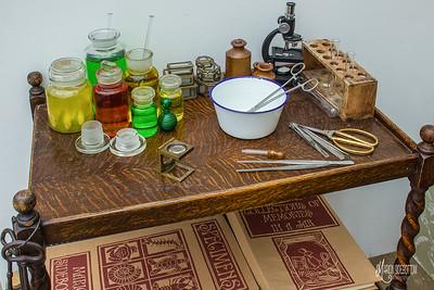 Scientific Study Area for Specimens Art Installation