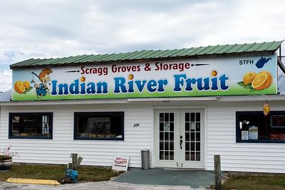 Scragg Groves - Oak Hill, FL