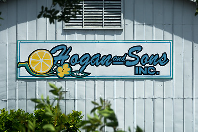 Hogan and Sons 02 - Vero Beach, FL