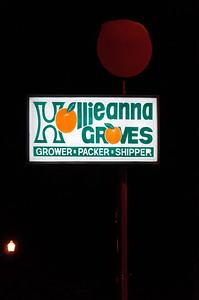 Night Hollieanna Sign - Maitland, FL