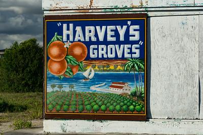 Harvey's Groves Wall Sign 02 - Rockledge, FL