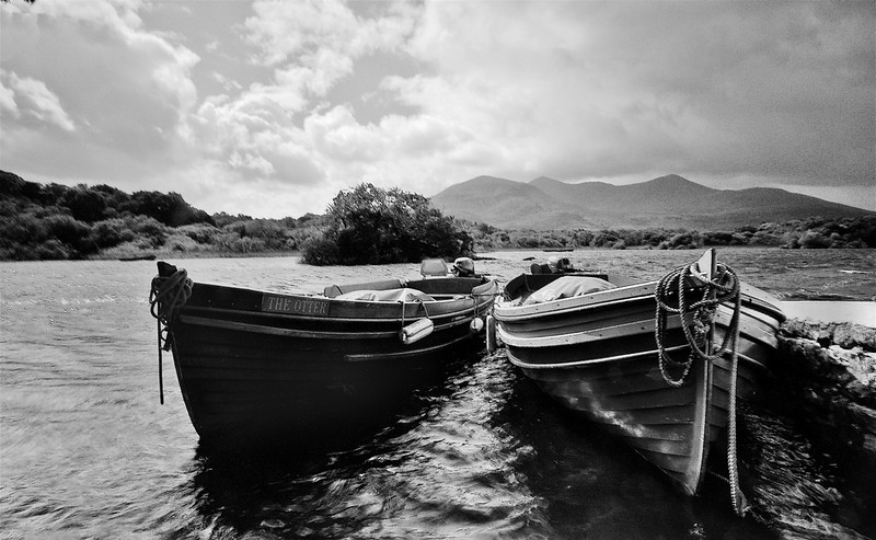 The Banks of Ross Castle<br /> <br /> Killarney National Park, County Kerry.
