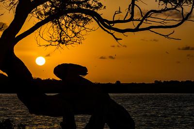 Mosquito Lagoon Sunrise II