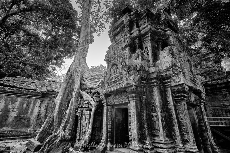 Ta Prohm, Cambodia