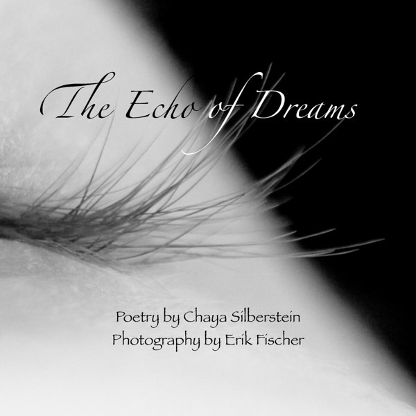 """The Echo of Dreams""  $25.00<br /> 7 x 7 laminated soft cover - 90 Pages <br /> Foreword by Kathryn Gallagher<br /> Numbered and signed by both artists"