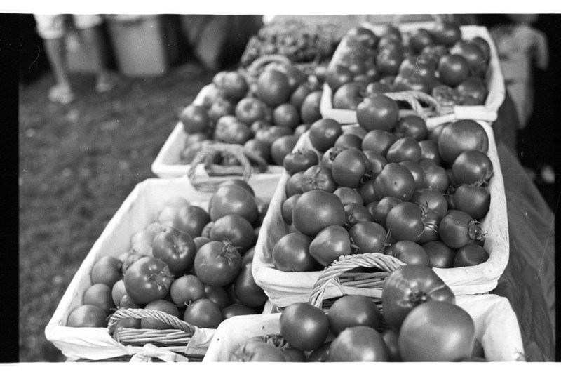 Tomatoes at the Farmers Market, Bend Oregon