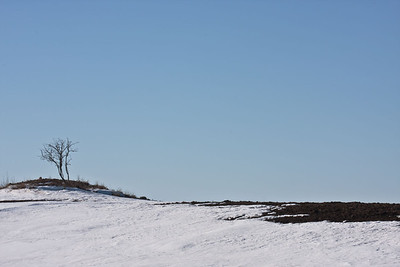 Images of the prairie landscape require a thoughtfulness, a contemplation, a long slow look.