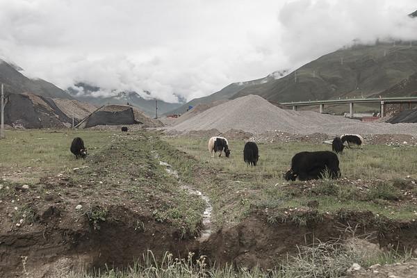 CHINA - TIBET COUNTRYSIDE