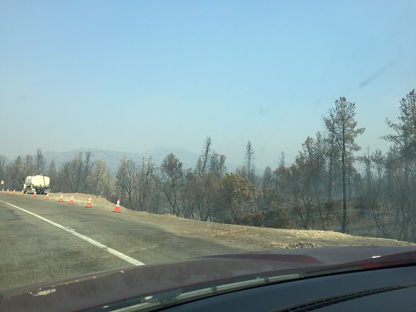 Timber_Fire_California