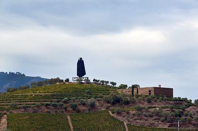 2015 Douro Valley - Sandeman - View from Regua