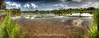 Balinese Paddy Field, Ubud