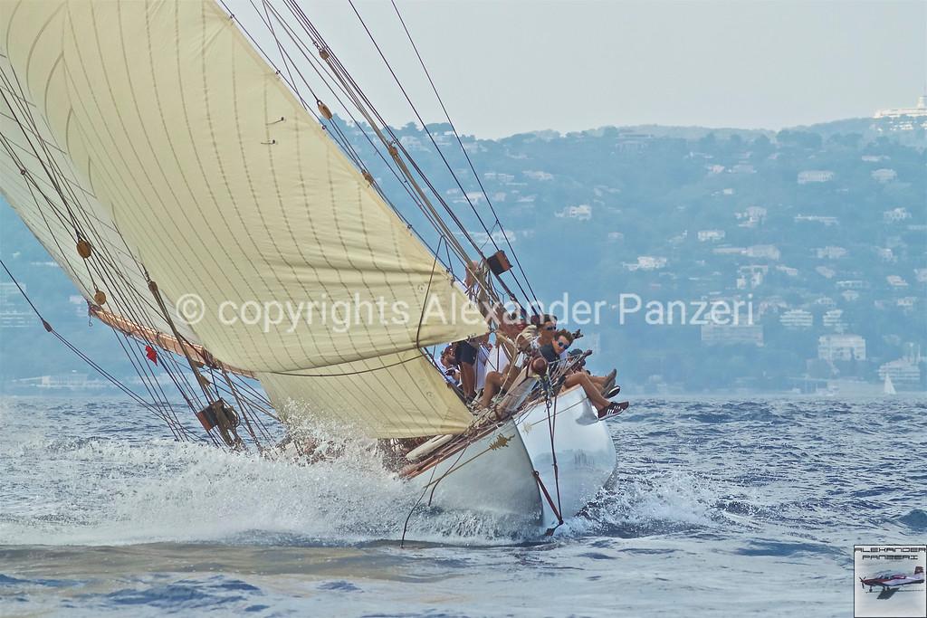 TUIGA D-3 - copyright © photo Alexander Panzeri